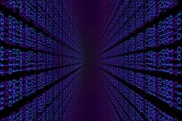 binary code, data scientist featured